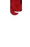 CLAYOVENS logo